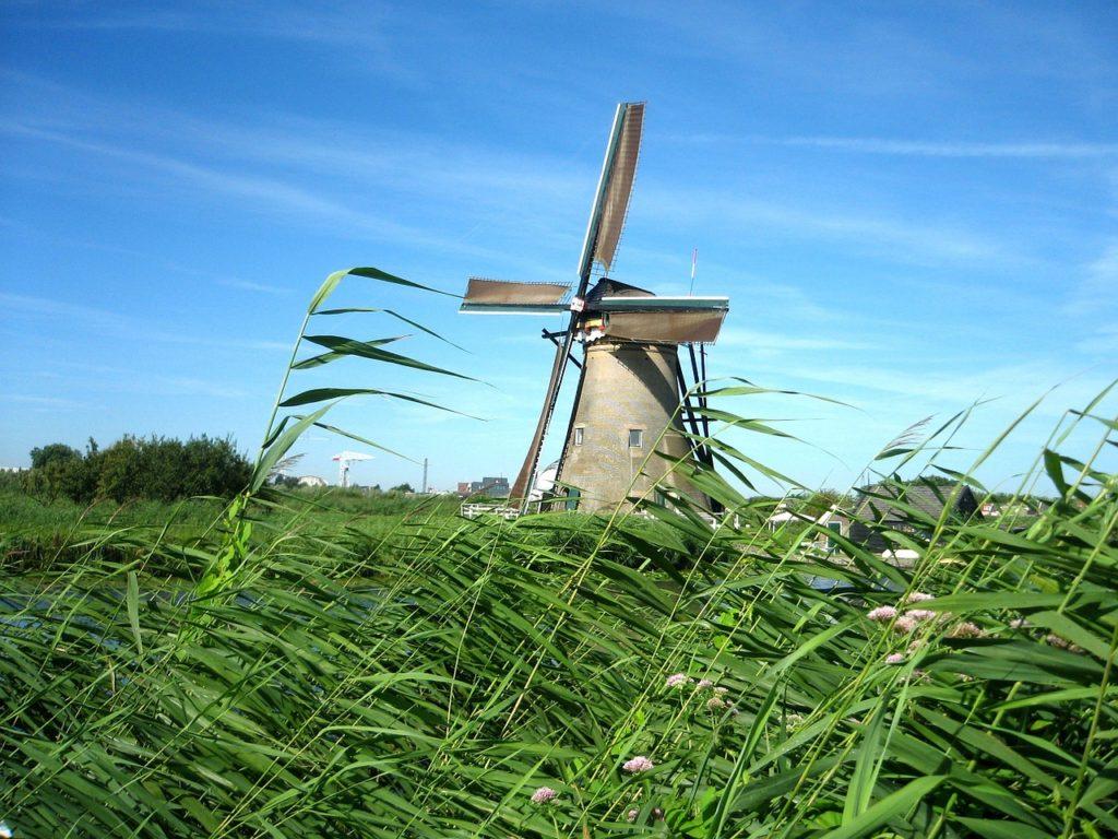 Windmühle und Schilf